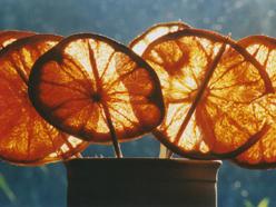 detail pomeranče