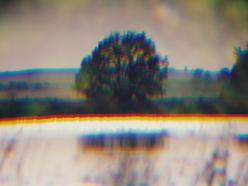 pohádkový strom