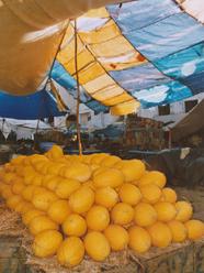 pomeranče trh