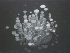 kroužky 1