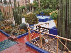 zahrada Marakesh 1