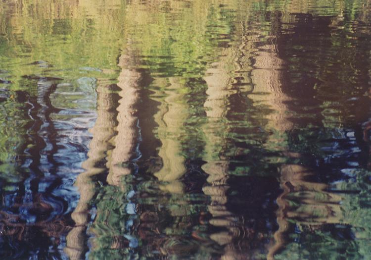 duby ve vodě