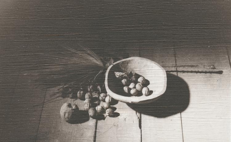 ořechy na plátně